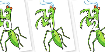 Numbers 0-50 on Praying Mantis to Support Teaching on The Bad Tempered Ladybird - 0-50, foundation stage numeracy, Number recognition, Number flashcards, counting, number frieze, Display numbers, number posters