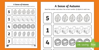 A Sense of Autumn Count and Colour Worksheet / Activity Sheet - exploring my world, seasons, Aistear, school trip, forest, blackberries, squirrels, worksheet, leave