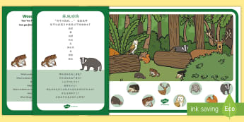 Woodland Animals Can You Find...? Poster and Prompt Card Pack English/Mandarin Chinese - Forest, woods, animals, fox, badger, owl, deer, mouse, hedgehog, squirrel, toad, EAL