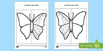 ورقة نشاط تناظر  الفراشة  - رياضيات، أوراق عمل، حساب، التناظر، التماثل، تناظر، عر
