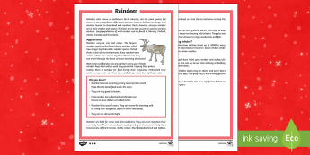 KS2 Reindeer Differentiated Fact File - Christmas, Nativity, Jesus, xmas, Xmas, Father Christmas, Santa, reindeer, caribou, fact file