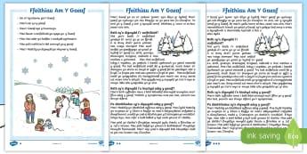 Gweithgaredd Darllen a Deall Y Gaeaf - Darllen, Deall, Y Gaeaf, Ffeil, Ffeithiau, Llythrennedd, Literacy, Reading, Comprehension, Winter, F
