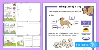 KS1 How To Look After A Dog Differentiated Comprehension Go Respond Worksheet / Activity Sheets - Pets, pet, EYFS, KS1, take, care, look, after, family, member, members, vet, vet surgery, surgery, i