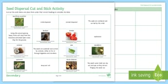 Seed Dispersal Cut and Stick Activity Sheet - Cut and Stick, seed, seeds, dispersal, wind, drop and roll, animal, reproduction, fruit, explosion,