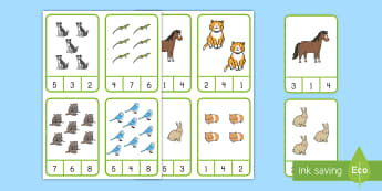 Pets Counting Peg Cards Activity - pets, family pets, classroom pets, counting cards, peg counting cards, counting, number recognition,