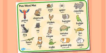 بساط كلمات عن حيوانات أليفة إنجليزي عربي