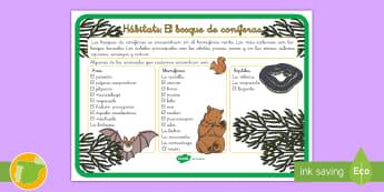 Hábitats: el bosque de coníferas Hoja informativa - animales, clasificación, hábitats, donde viven, grupos