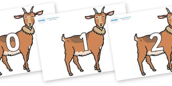 Numbers 0-31 on Medium Billy Goats - 0-31, foundation stage numeracy, Number recognition, Number flashcards, counting, number frieze, Display numbers, number posters