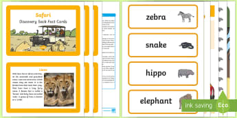 Safari Discovery Sack - EYFS, Early Years, KS1, Understanding the World, exploration, discovery, finding out, facts, information, Africa, Savanna, grasslands, ecosystems, habitats, animals