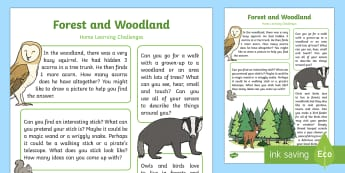 EYFS: Forest and Woodland Home Learning Challenges Nursery FS1 - homework, home school links, parents, British Wildlife, animals, trees