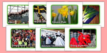 Lluniau Dydd Gwyl Dewi - welsh, cymraeg, Dewi Sant, Dydd gwyl Dewi, Mawrth y 1af, st davids day, st david, photos