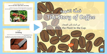 The Story of Coffee PowerPoint - Arabic/English - food , coffee, coffee bean, information, presentation, EAL, Arabic.,Arabic-translation