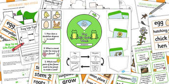 Life Cycles Lapbook Creation Pack - life cycles, lapbooks, pack