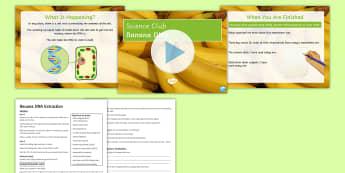 Science Club: Banana DNA Extraction Activity - DNA, dNA extraction, genetics, science club, banana,