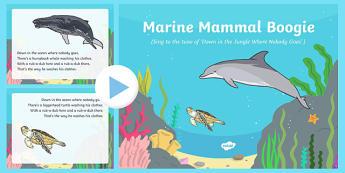 Marine Mammal Boogie Song PowerPoint