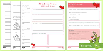 Strawberry Storage STEM Activity and Resource Pack - strawberries, strawberry plants, strawberry farming, strawberry picking, strawberry plant life cycle