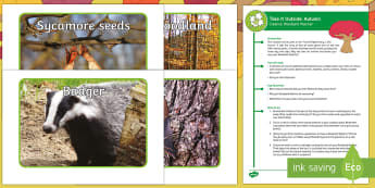 KS1 Take It Outside: Autumn Creative - Woodland Watcher Activity - Little Acorns, twinkl originals, fiction, Outdoor and Woodland Learning, Wonder Investigate Learn Di