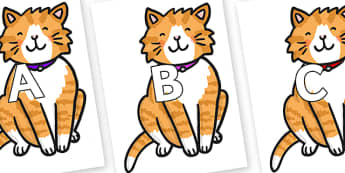 A-Z Alphabet on Cat - A-Z, A4, display, Alphabet frieze, Display letters, Letter posters, A-Z letters, Alphabet flashcards