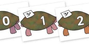 Numbers 0-50 on Turtle to Support Teaching on The Great Pet Sale - 0-50, foundation stage numeracy, Number recognition, Number flashcards, counting, number frieze, Display numbers, number posters