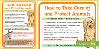 How to Take Care of and Protect Animals A2 Display Poster - PSW, Life Skills, Animal Cruelty, SPCA, animal rights,pets, caring for your pet, protect animals