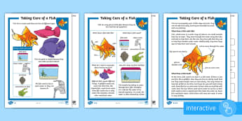 KS1 How to Look After a Fish Differentiated Comprehension Go Respond  Worksheet / Activity Sheets - Pets, pet, EYFS, KS1, take, care, look, after, family, member, members, vet, vet surgery, surgery, i