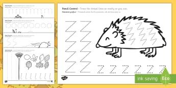 Autumn Themed Pencil Control Activity Sheets English/Romanian - Autumn Themed Pencil Control Sheets - EAL,  autumn pencil control, autmn, autunm, atumn, pencilcontr