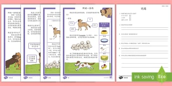 如何照顾一条狗阅读理解 - 宠物,动物,照顾,狗,养狗