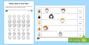 What Colour Is Your Hair? Activity Sheet - worksheet, data, counting, collect information, foundation, hair colour, survey