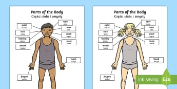 Parts of the Body Senses Labelling Activity Sheet English/Polish - Parts of the Body Senses Labelling Activity Sheet - worksheet, body, ourselves , sences, sesnses, ou