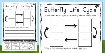Butterfly Life Cycle Sentence Writing Worksheet / Activity Sheet - australia, worksheet