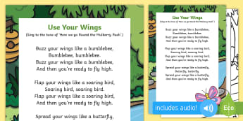 Use Your Wings Song - The Crunching Munching Caterpillar, Sheridan Cain, life cycle of a butterfly, lifecycle, action song
