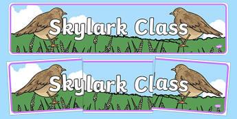 Skylark Class Display Banner - skylark class, display banner, display, banner, skylark, class