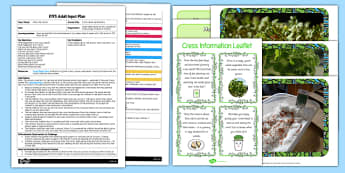 Cress Head Hairdressers EYFS Adult Input Plan and Resource Pack - EYFS, Early Years planning, adult led, PD, Physical Development, scissor skills, plants and growth, life cycle