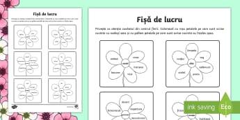 Sinonime și antonime pe flori Fișă de lucru - Spring, primavara, primăvara, flori, floare, petală, petale, sinonime, antonime, acelasi sens, cuv