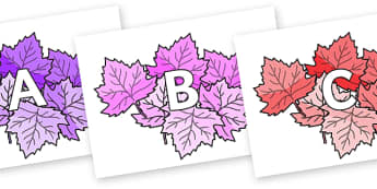 A-Z Alphabet on Autumn Leaves (Multicolour) - A-Z, A4, display, Alphabet frieze, Display letters, Letter posters, A-Z letters, Alphabet flashcards
