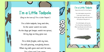 I'm a Little Tadpole Song - frog, froglet, life cycle, tadpoles, frogspawn, growing, growth, spring, early years, eyfs