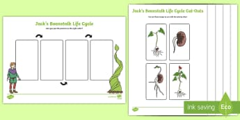 Jack's Beanstalk Lifecycle Activity Sheet - Jack and the beanstalk, bean, broad bean, growing,  life cycle activity sheet, life cycle, beanstalk, worksheet, KS1