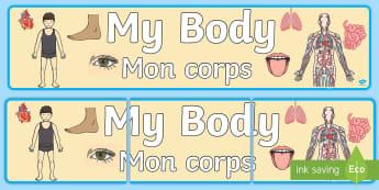 My Body  Display Banner - English/French - Body, heart, display, eyes, ks1,French-translation
