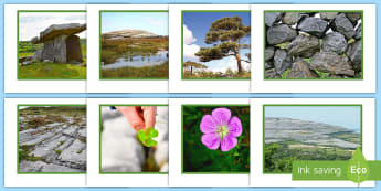 The Burren Display Photos - clare, ireland, geography, rocks, tourism.,Irish