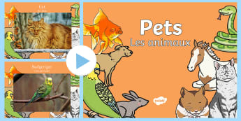 Pets PowerPoint English/French - domestic animals, Pets Photo Powerpoint - pets, animals, pets photos, powerpoint, photo powerpoint,