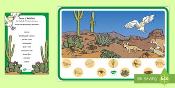 Desert Habitat Can You Find...? Poster - desert, desert habitat, desert animals, desert ecosystem, USA desert