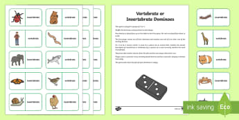 Invertebrate or Vertebrate Dominoes - CfE science games, biodiversity and interdependence, planet earth games, animal classification, mini