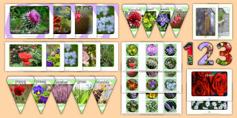 Flower Pictures Resource Pack - gardening, memory, names, flowers, petals