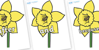 Connectives on Daffodils - Connectives, VCOP, connective resources, connectives display words, connective displays