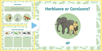 Living Things Habitats Herbivore Carnivore Teach Pack PowerPoint