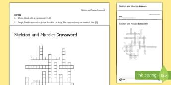 KS3 Skeleton and Muscles Crossword