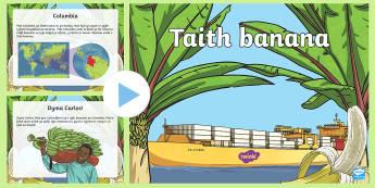 Pŵerbwynt Taith Banana Masnach Deg i Gymru  - Masnach Deg, Fairtrade, banana, fferm, farm, ffermwyr, farmer, gweithwyr, workers, lori, lorry, llon