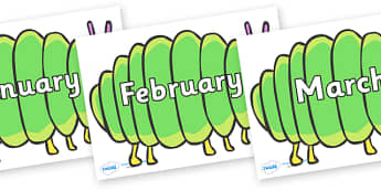 Months of the Year on Fat Caterpillars to Support Teaching on The Very Hungry Caterpillar - Months of the Year, Months poster, Months display, display, poster, frieze, Months, month, January, February, March, April, May, June, July, August, September