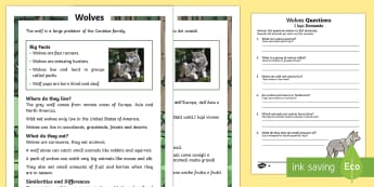 Wolves Differentiated Reading Comprehension Activity Italian Translation Italian Translation - KS1 reading, comprehension, questions, wolves, information, non-fiction, animals, fact files