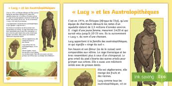 Fiche documentaire : Lucy et les australopithèques - préhistoire, prehistory, le paléolithique, évolution de l'homme, Human evolution, hominidé, cyc